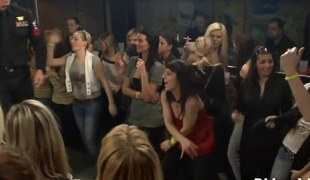 amatør hardcore blowjob fest