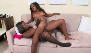 Pair of ebon babes Coco and Xena are having a great time with a toy