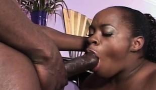 Ebony plumper sucks his large dick and he pounds her wet cunny